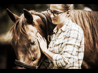 Equine and Canine Therapy