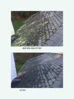 Cleaned roof using soft wash machine in Walpole
