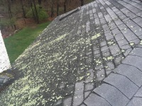 removed roof mildew in Franklin