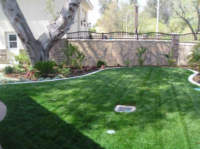 Lawn service weekly and monthly services