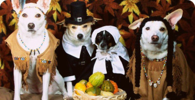 Pet Thanksgiving