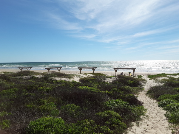 Padre Island National Seashore, 70 miles of sand and shell beaches