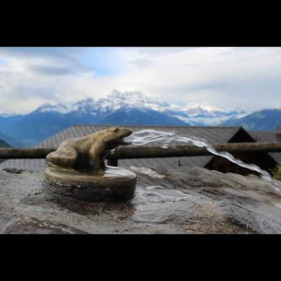 Frog Fountain, mountains background