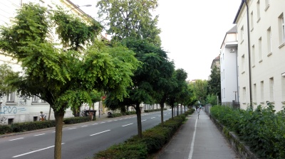 Sidewalk of street