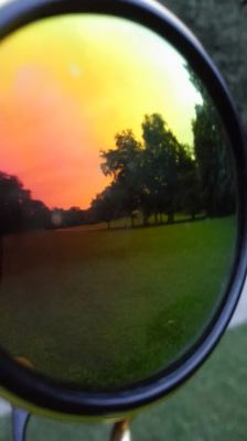 View of park in sunglasses reflection