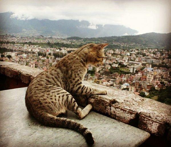 Cathmandu