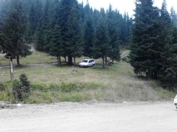 Romanian Hillside