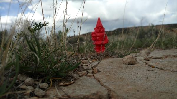The Gnome!