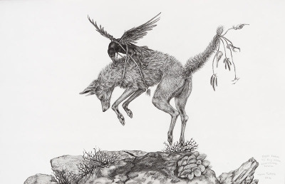 Coyote learns to fly with unwilling Raven