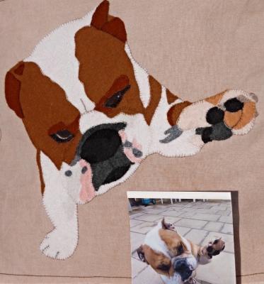 Pet portrait, dog portrait, love dog