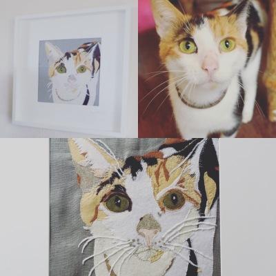 pet Portrait, horse portrait, portrait, love animals , love horse, horse