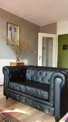 Two sofa's set - for 2