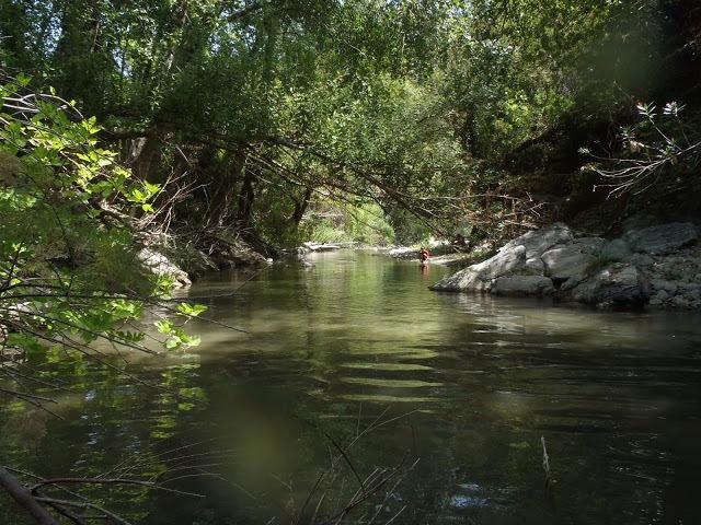 Rio Genal river