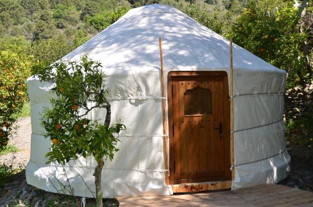The Olive Yurt