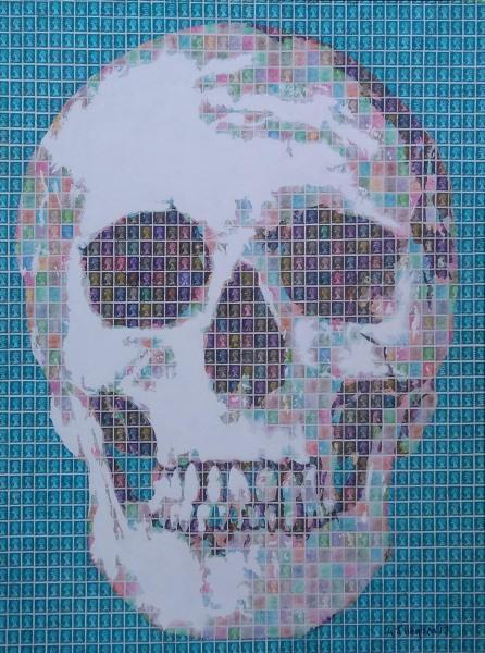 Skull, Human, Human Skull, Skeleton,