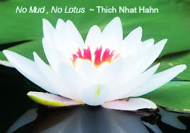 No Mud, No Lotus - Thich Nhat Hahn. Transformation out of difficulty.