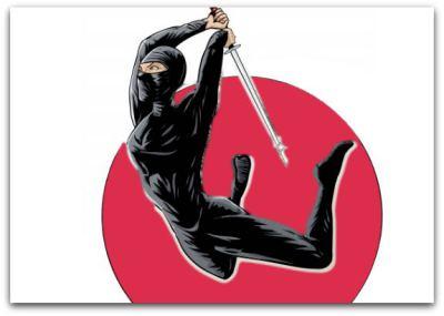 Ninja tricks to success