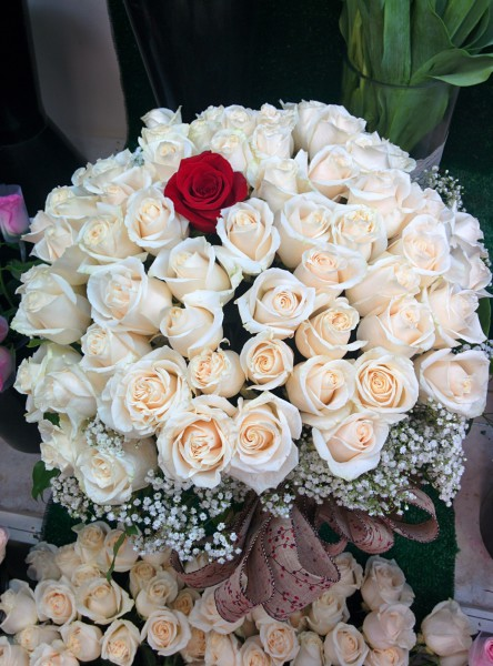 Four Dozen Roses In A Vase - Custom