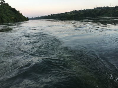 Near-Death on the Nile
