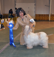 Henya 2010 Brood Bitch, Diane Fields handler