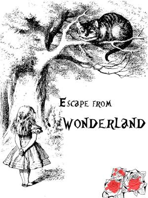 Escape Room Adventures WNY, Escape Room Buffalo, Escape Room