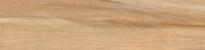 Softwood Beige