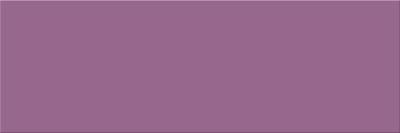 Vivid Colours Violet