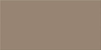 Basic Palette Mocca Satin