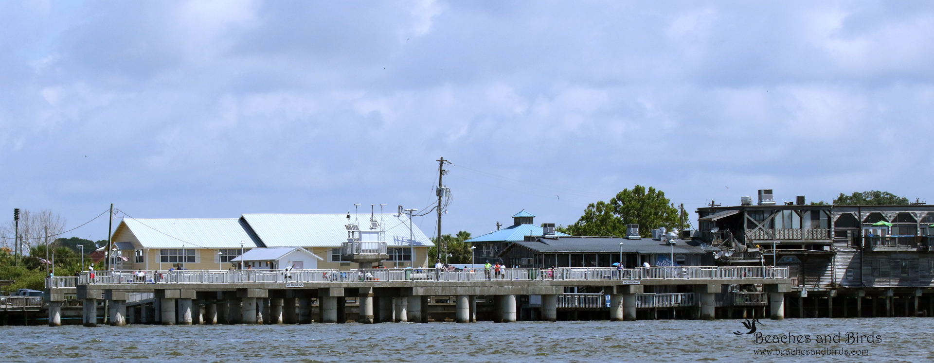 Dock Side of Cedar Key