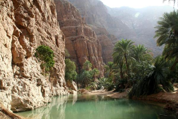 Oman, L'adresse De La Beauté