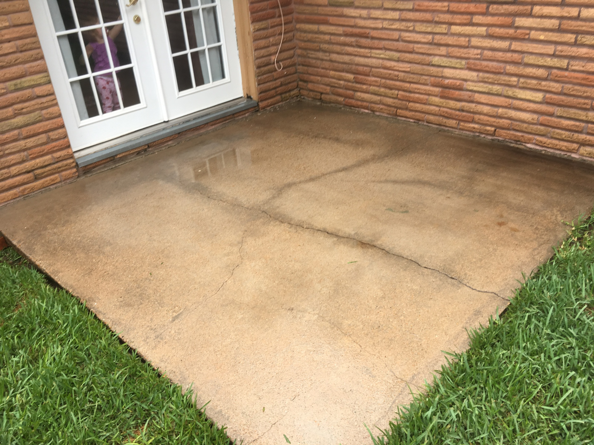 Soft wash to remove mold and mildew and concrete pressure washing