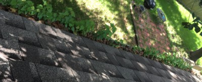 debries and plant growth in gutters before Carlson Pressure washing clean the gutters