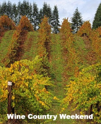 Thanksgiving Weekend in Wine Country! November 23rd - November 25th