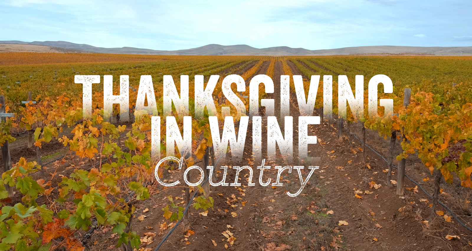 Thanksgiving Weekend in Wine Country Friday, Nov 29th - Sunday, Dec 1st