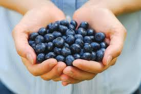Are You Feeling Blue? Eat A BlueBerry!