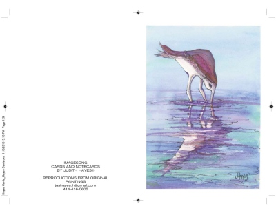 Birds, Set#4