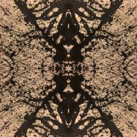 Santiago Jager Digital Art
