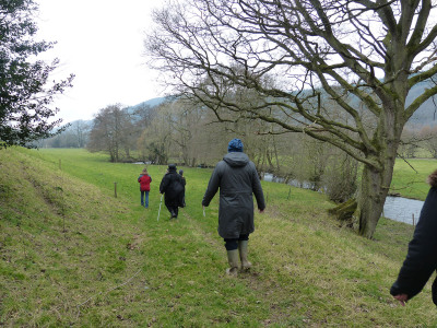 Participatory Walks and Workshops