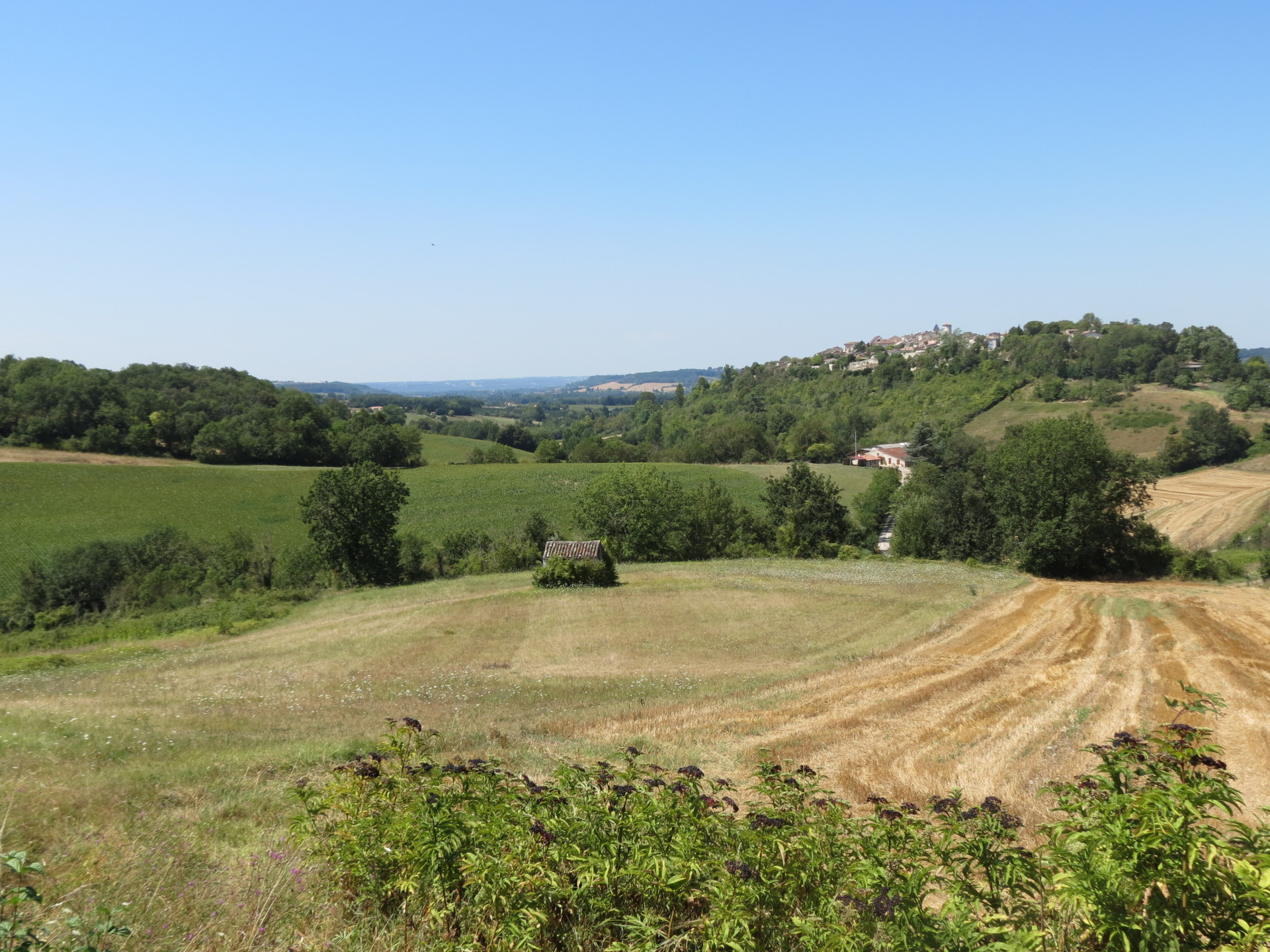 View near Puymirol