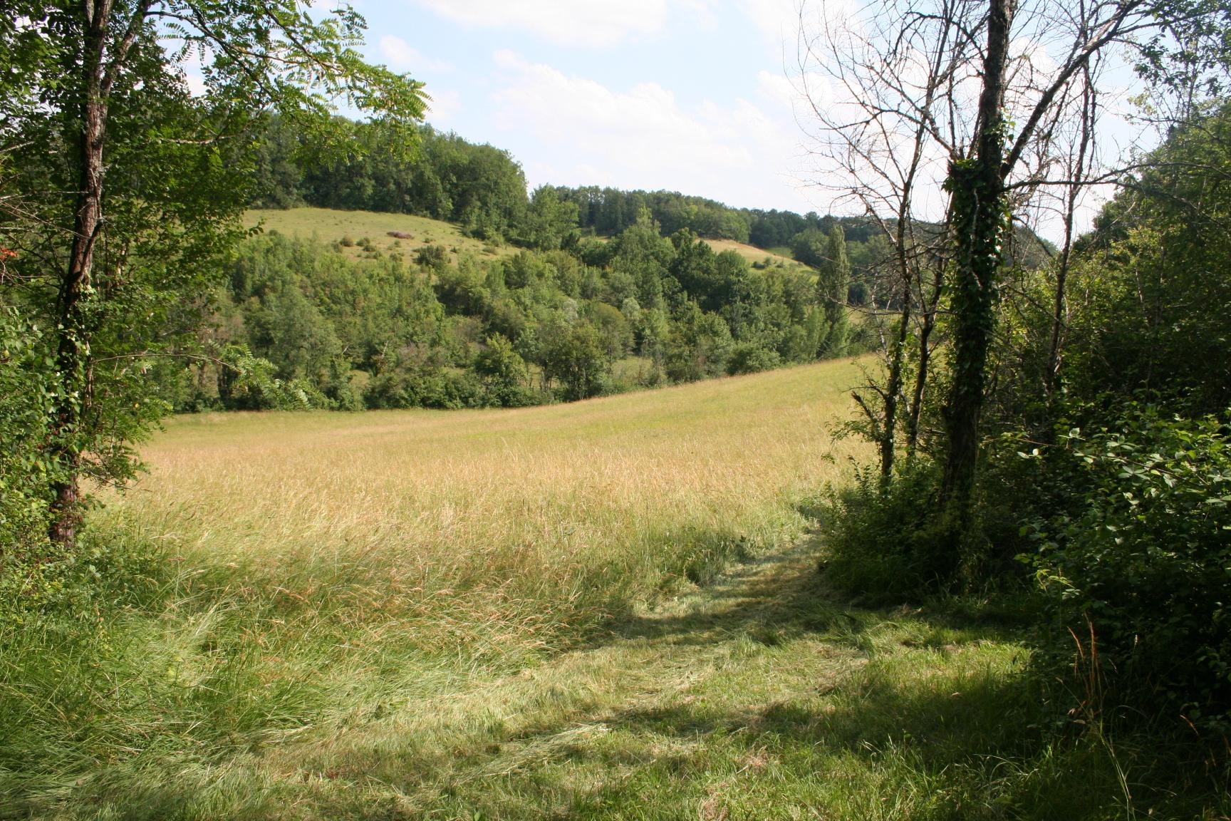 Faysselle Field