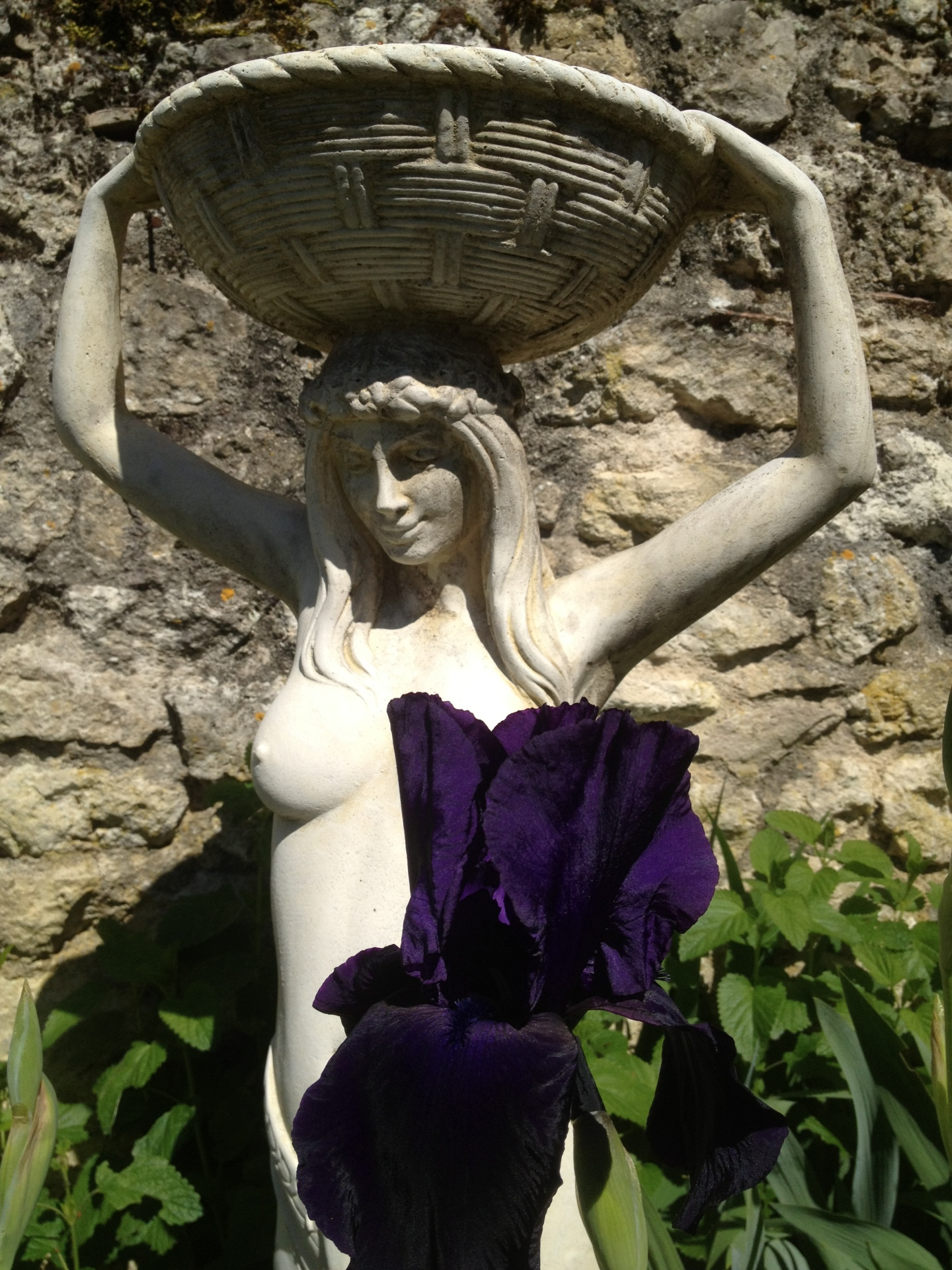 Faysselle Garden