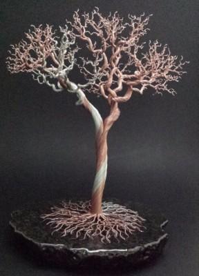 12.5 inch Oak tree with deadwood. $345