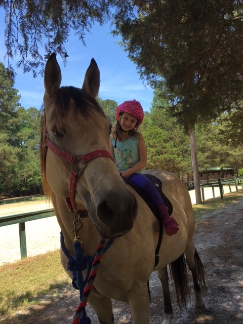 Lessons and Pony rides