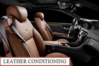 Leather Treatment Interior Detail