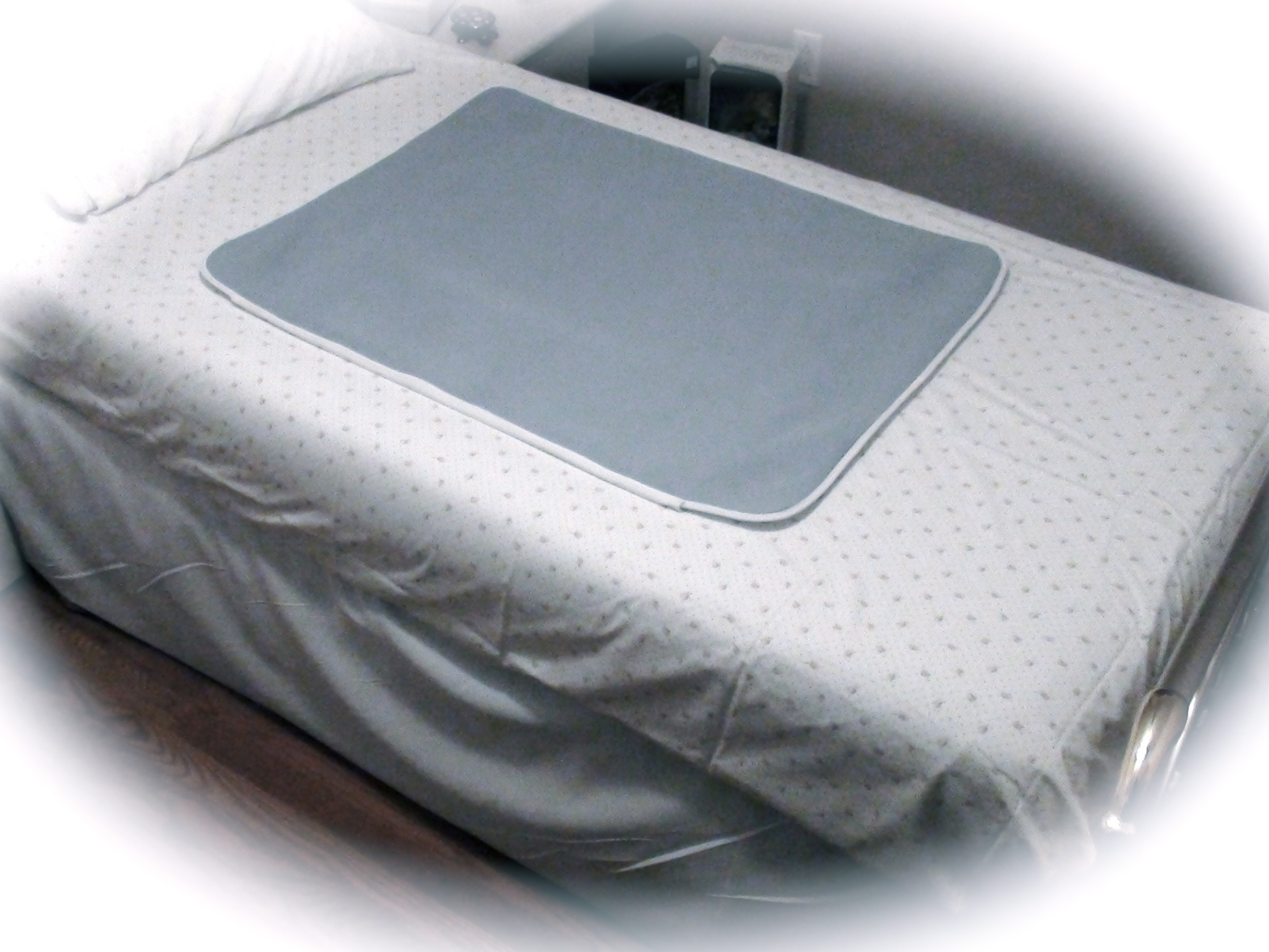 PCRP Regular Bed Pad