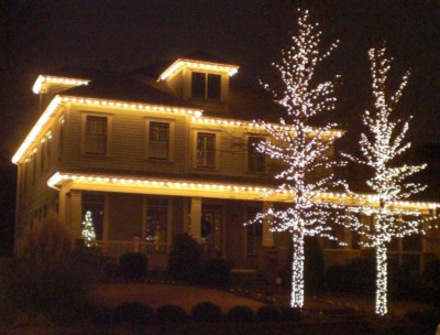 Holiday Light Hanging and Removal