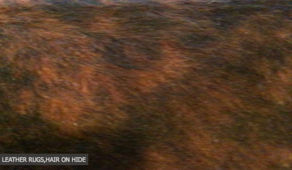 Hair Hide Rugs