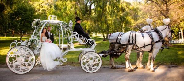 Cinderella Wedding, Cinderella Carriage, Bride and Groom