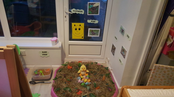 Bird theme tuffspit and sensory play