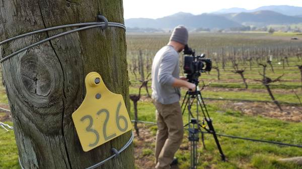 Seifried Estate video production filmed in Nelson, NZ
